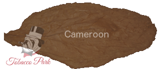 tp-wrapper-cameroon.png