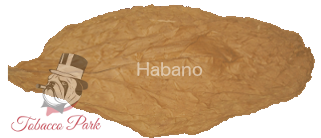tp-wrapper-habano.png