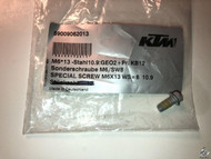 59009062013 Brake Disc Bolt ALL KTM, Husqvarna SPECIAL SCREW M6X13 WS=8 10.9