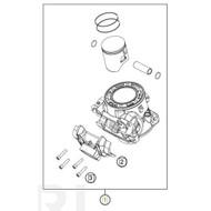 Cylinder + Piston (55730138000) (55730138000)