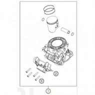 Cylinder + Piston 250 Enduro 2021 (55530138100) (55530138100)