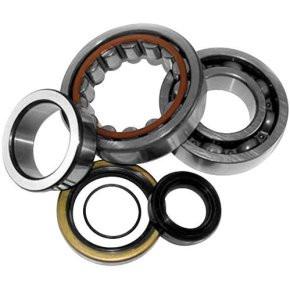 Crank Bearing /& Seal Kit~2008 KTM 65 SX Offroad Motorcycle All Balls 24-1102