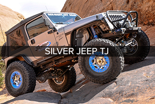 silvertjthumb1.jpg