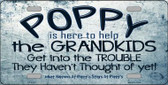 Poppy Is Here To Help Wholesale Metal Novelty License Plate