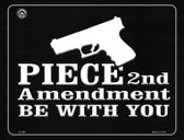 Piece 2nd Amendment Be With You Wholesale Metal Novelty Parking Sign