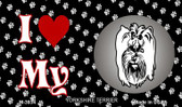 I Love My Yorkshire Terrier Wholesale Magnet M-3934
