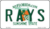 Rays Florida State License Plate Wholesale Magnet M-2084