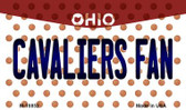 Cavaliers Fan Ohio State License Plate Wholesale Magnet M-10852