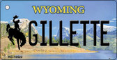 Gilletle Wyoming State License Plate Wholesale Key Chain
