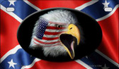 Confederate Eagle Novelty Wholesale Motorcycle License Plate MP-2408