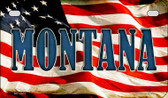 Montana US Flag Wholesale Novelty Motorcycle Plate MP-3637