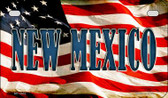 New Mexico US Flag Wholesale Novelty Motorcycle Plate MP-3642
