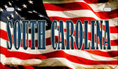 South Carolina US Flag Wholesale Novelty Motorcycle Plate MP-3651