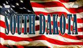 South Dakota US Flag Wholesale Novelty Motorcycle Plate MP-3652