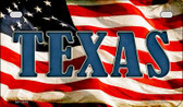 Texas US Flag Wholesale Novelty Motorcycle Plate MP-3654