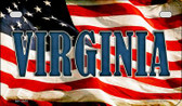 Virginia US Flag Wholesale Novelty Motorcycle Plate MP-3657
