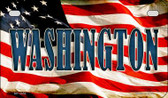 Washington US Flag Wholesale Novelty Motorcycle Plate MP-3658