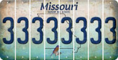 Missouri 3 Cut License Plate Strips (Set of 8) LPS-MO1-030