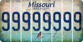 Missouri 9 Cut License Plate Strips (Set of 8) LPS-MO1-036