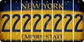New York 2 Cut License Plate Strips (Set of 8) LPS-NY1-029