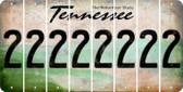 Tennessee 2 Cut License Plate Strips (Set of 8) LPS-TN1-029