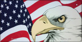 American Flag With Eagle Wholesale Novelty Metal Bicycle Plate BP-148