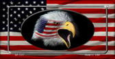American Flag With Eagle Wholesale Novelty Metal Bicycle Plate BP-1317