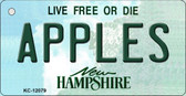 Apples New Hampshire State Wholesale Novelty Metal Key Chain KC-12079