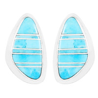 Turquoise Earrings Sterling Silver E1304-C05