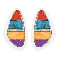 Multi Gemstone Earrings Sterling Silver E1304-C00