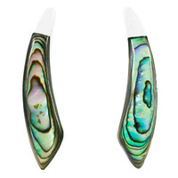Sterling Silver Earrings Abalone Shell E1223-C10