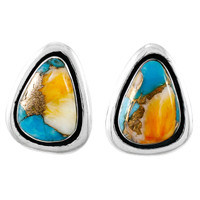 Sterling Silver Earrings Spiny Turquoise E1213-C89