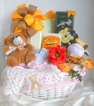 Baby baskets to Boston Ma