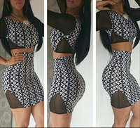 2 Piece Bodycon Mesh Dress