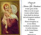 Prayer for a Human Life Amendment Prayer Card