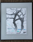 Used Framed and Matted Tree Print by Joseph Matose