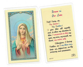 Prayer To Our Lady Laminated Prayer Card