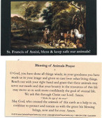 St. Francis Of Assis, Bless & Keep Safe Our Animals Prayer Card