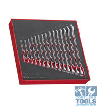 Teng Tools 15 Piece Combination Spanner Set 5.5-19mm - TED6515