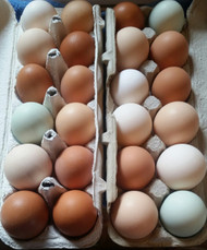 Farm Fresh Eggs, Sold per Dozen, *Pick Up Only*