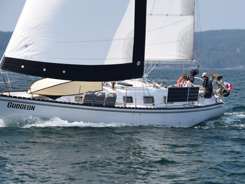 Gudgeon with Precision Sails mainsail and headsail