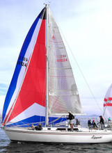 Get Asymmetrical All Purpose Spinnakers at PrecisionSailsLoft.com
