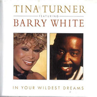In Your Wildest Dreams By Tina Turner On Audio CD Album 1996 - EE726095