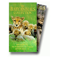 Baby Animals Collection Set On VHS - E565575