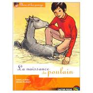 Clara Et Les Poneys Tome 3 La Naissance Du Poulain By Mirej Mireille - EE583284