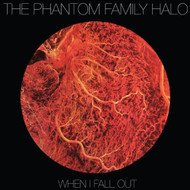 When I Fall Out On Vinyl Record By Phantom Family - EE548267
