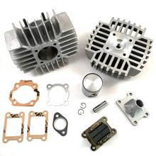 Puch Gilardoni 74cc Cylinder Kit w/ Head, Reeds, & Intake