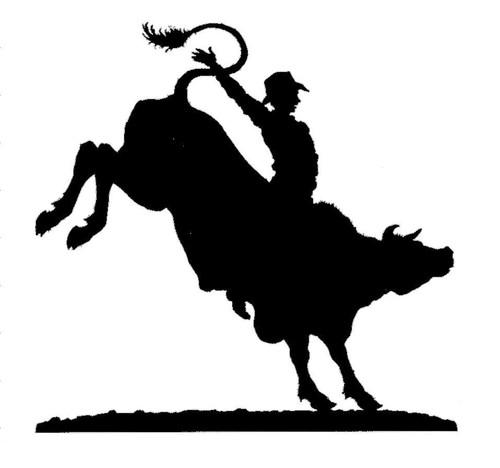 Bull Rider Silhouette