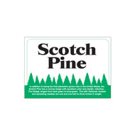 Species Sign - Scotch Pine (JB-SP-8)