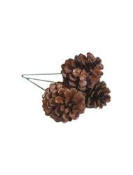 "1.5"" 3 Pine Cone Pick - Natural Lacquer (WS-PC3N)"